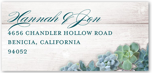 Splendid Succulents Address Label