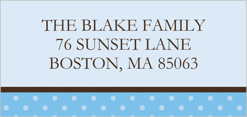Baby Blue Dots Address Label