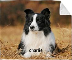 photo gallery pet fleece photo blanket
