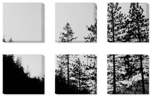 symmetrical six spread photo canvas prints shutterfly