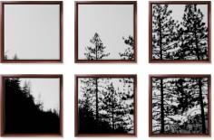 symmetrical six spread canvas prints