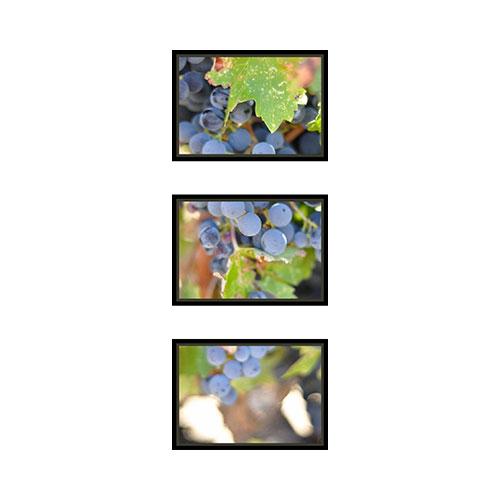 Stack Of Three 10x14 Spread Mounted Wall Art, Multi piece, Black, Multicolor