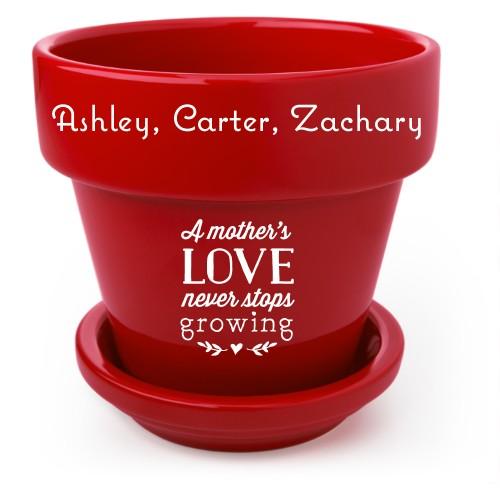 Mother's Love Flower Pot, Red, White
