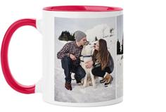 pets gallery of three mug