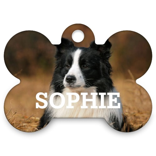 Photo Gallery Bone Pet Tag, Multicolor