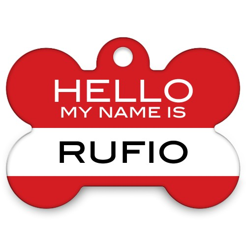 Hello My Name Is Bone Pet Tag, Red