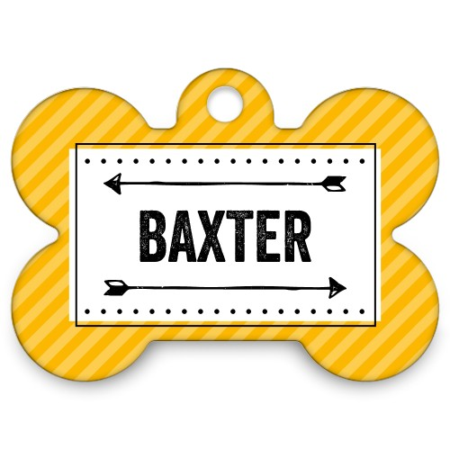 Layered Stripes Bone Pet Tag, Orange