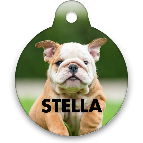 Photo Gallery Circle Pet Tag, Multicolor