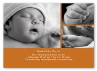 classic pumpkin greeting card 5x7 photo