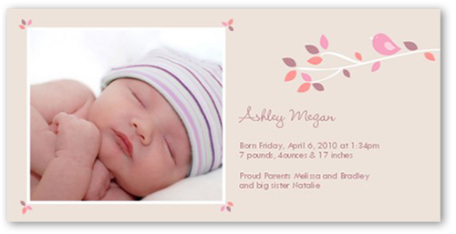 Spring Branch Girl Birth Announcement