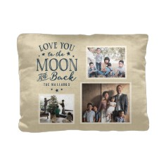 to the moon and back script pillow