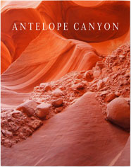 gallery text premium poster