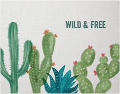 painted cactus premium poster
