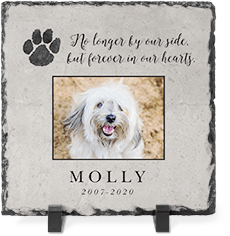 forever in our heart slate plaque