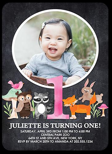 Animal Festivities Girl Birthday Invitation