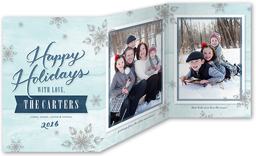 Shadowed Flurries Holiday Card