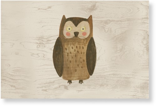 Owl Watercolor Wood Wall Art, Single piece, 20 x 30 inches, Multicolor