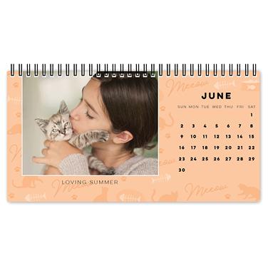 must love cats desk calendar